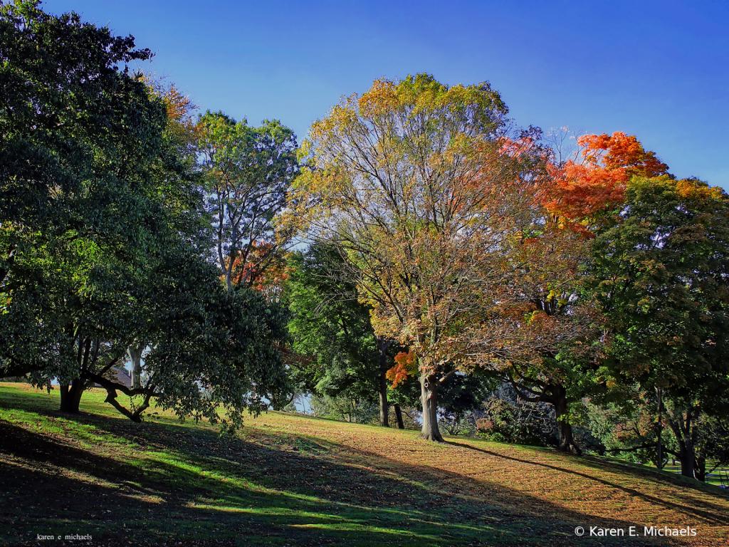 Fairmount Fall - ID: 15826802 © Karen E. Michaels