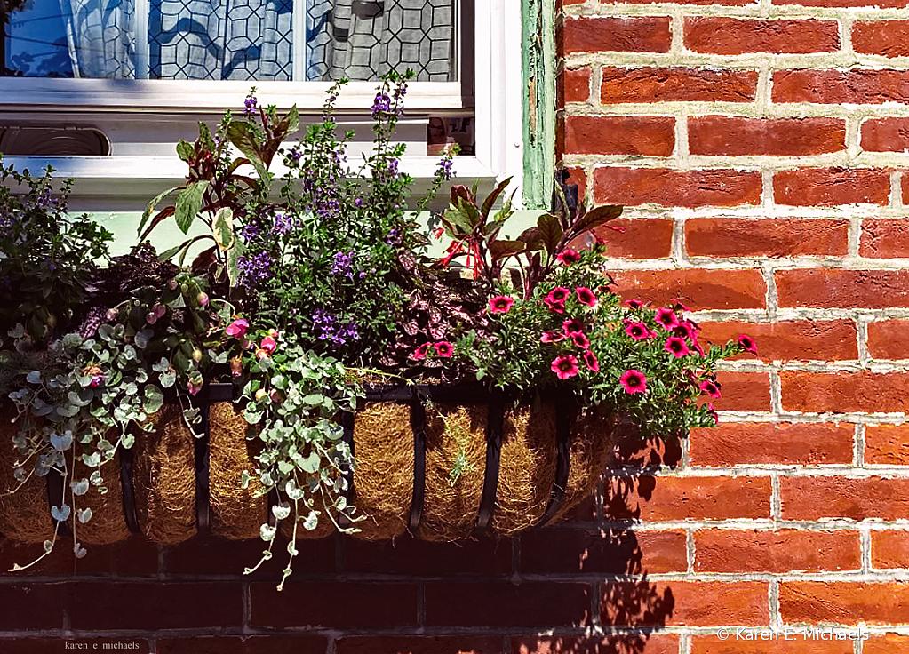 flower box frenzy - ID: 15829657 © Karen E. Michaels