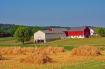 On the Amish Farm