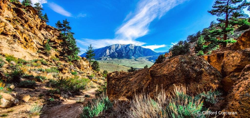 Sierra Nevada Summer - ID: 15830616 © Clifford Corcoran