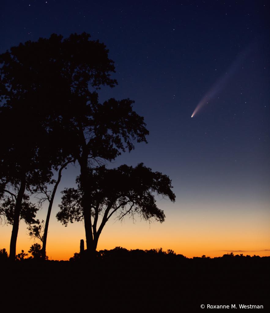 Comet Neowise over North Dakota skies - ID: 15832022 © Roxanne M. Westman