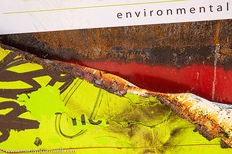 Environmental, My Dear Watson - ID: 15855673 © Marilyn Cornwell