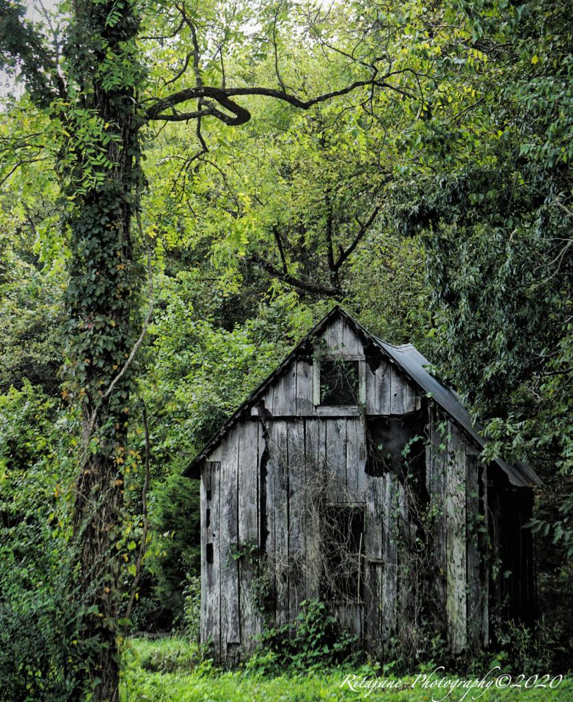 A lull in time.... - ID: 15855454 © Ritajane Smith