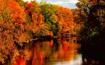 Fall in the U.P.