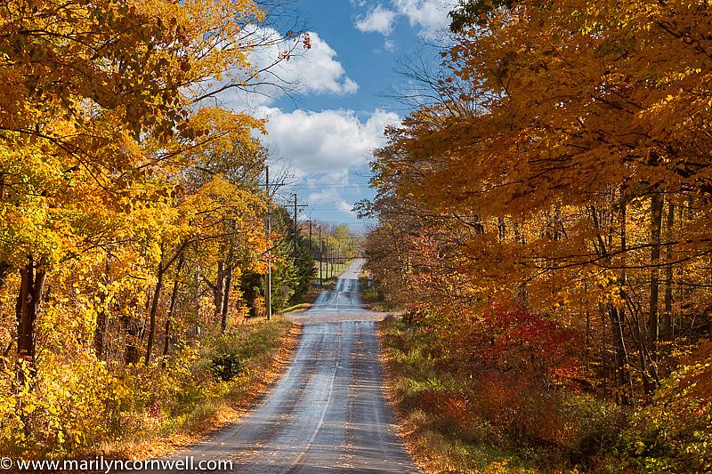 Along Moyer Road