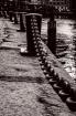 Seaport Chain Lin...