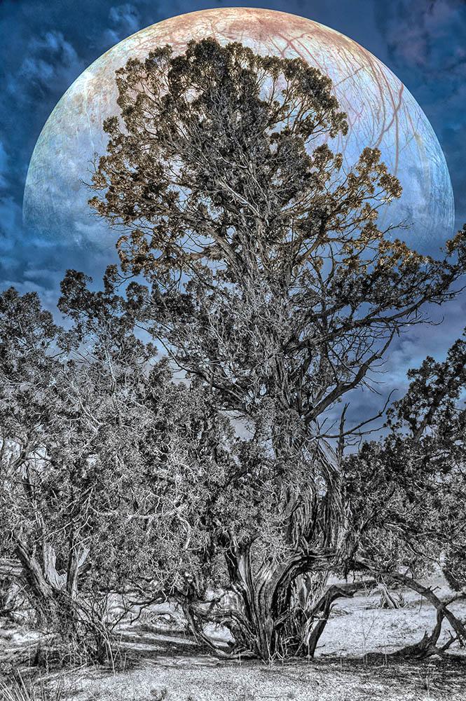 Europa Rising - ID: 15869719 © Paul Coco