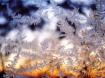 Jack Frost Design...