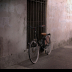 2Bike On Wall - ID: 15874132 © Jacquie Palazzolo