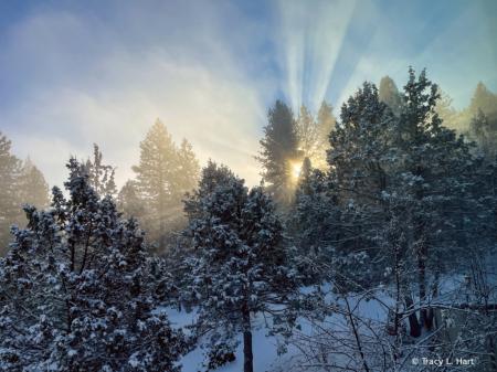 Gods Beauty of Morning