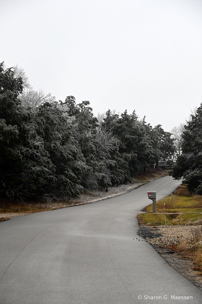 Cold Country Road - ID: 15879096 © Sharon G. Maessen