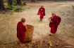 Three novices