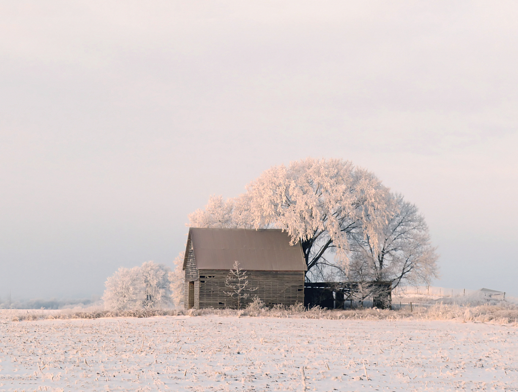 Crib In Snow And Frost