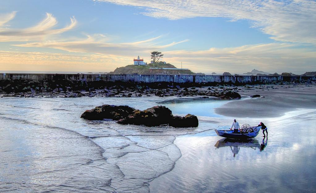 Chasing the Tide - ID: 15882336 © Sheila Faryna