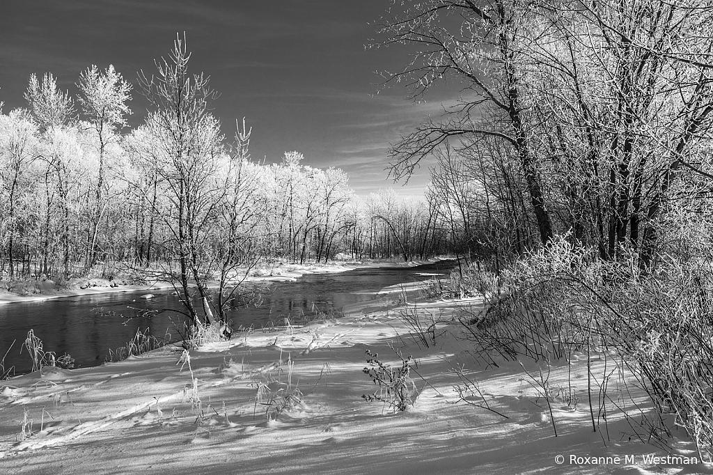 Frosty Winter trees on Minnesota river - ID: 15882662 © Roxanne M. Westman