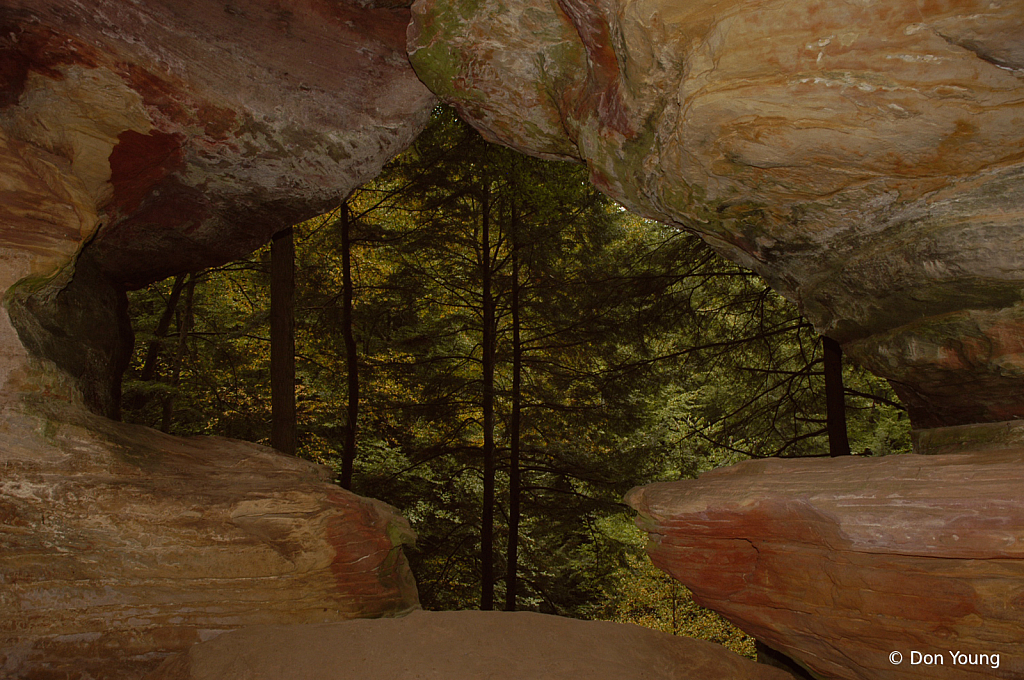 Forest Through A Cave Window - ID: 15884815 © Don Young