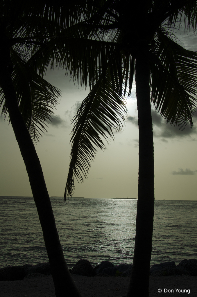 Key West Sunset - ID: 15886906 © Don Young