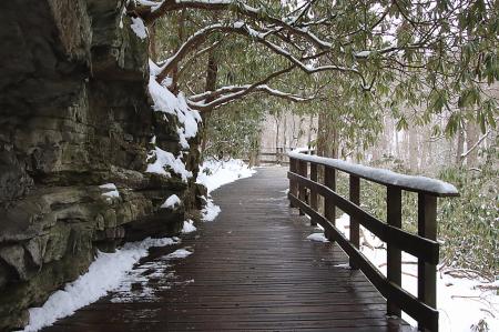 Winter Walkway