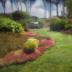 © Bruce E. Van-Buskirk PhotoID# 15891928: Mendocino Botanical Gardens