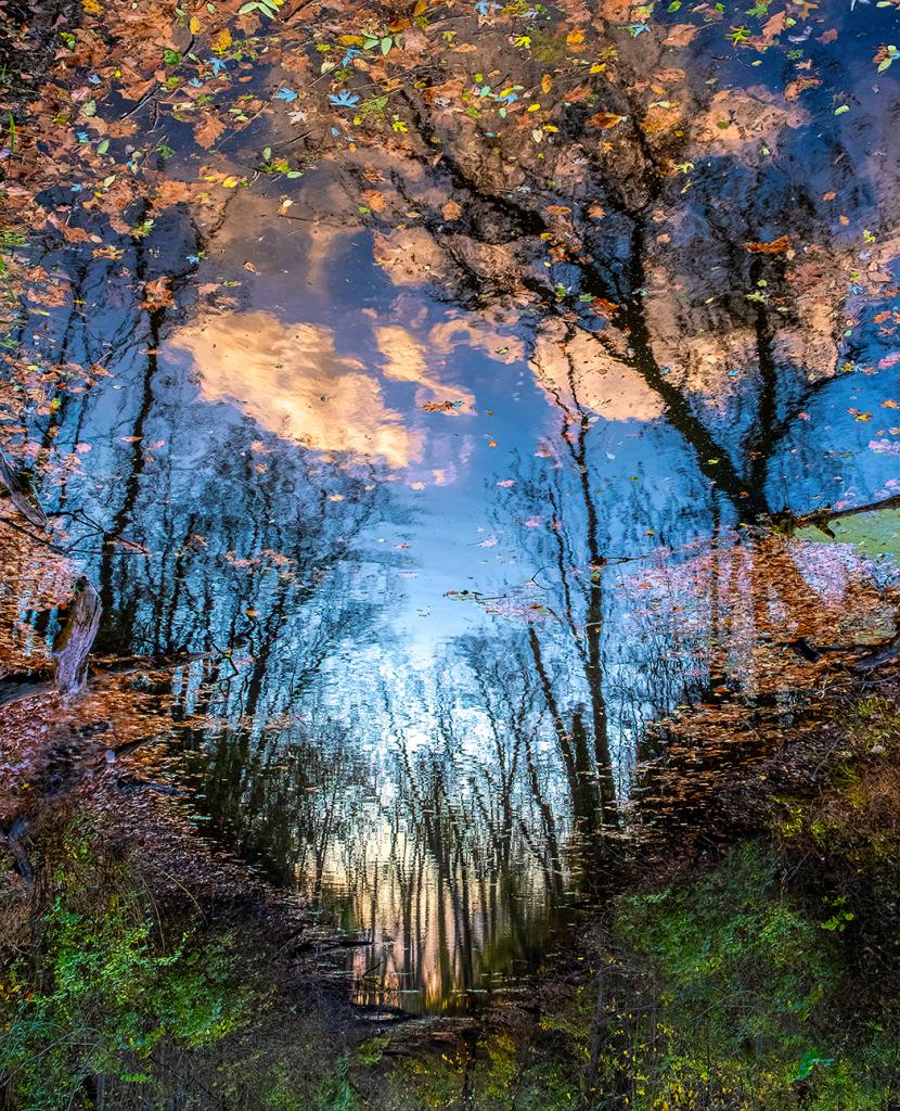 Step into My World - C&O Canal Lockhouse 74 - ID: 15895684 © Martin L. Heavner