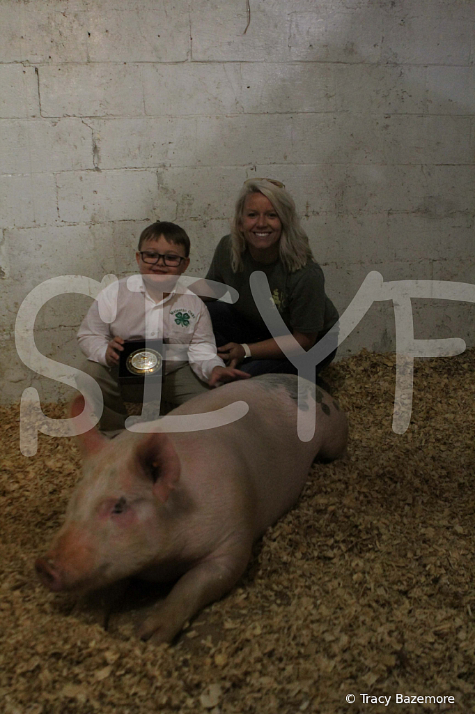 swine4956 - ID: 15898534 © Tracy Bazemore