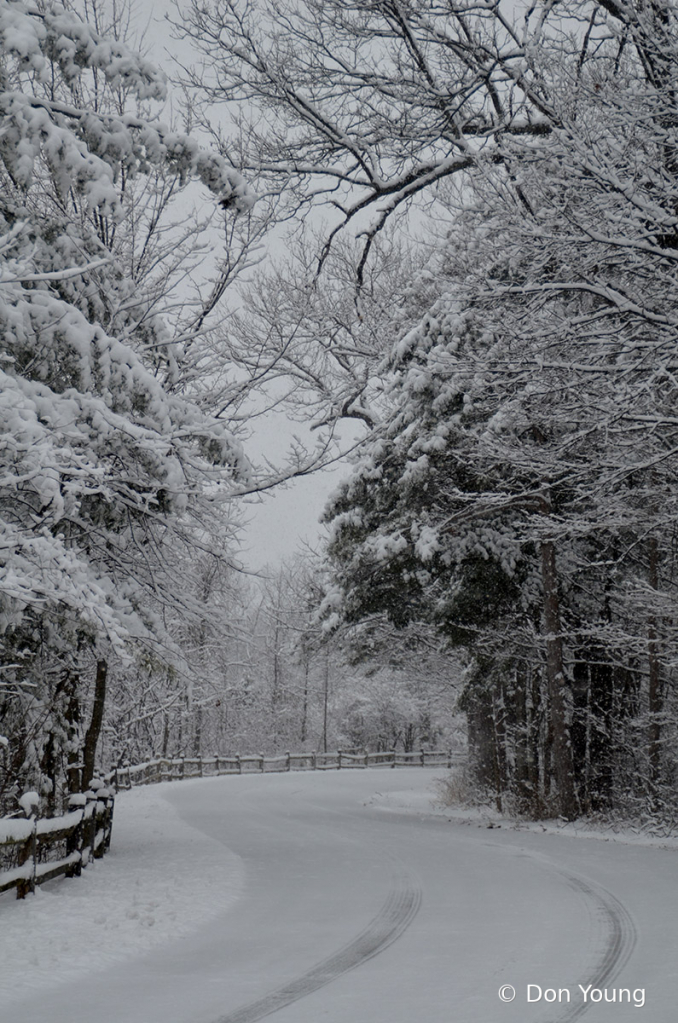 Snowy Road - ID: 15901302 © Don Young