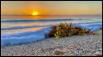 Stuart sunrise 3-...
