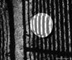 Ranmasu Portal  #...
