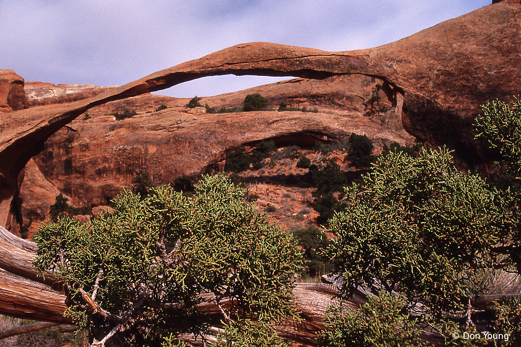 Landscape Arch, Arches National Park - ID: 15913487 © Don Young