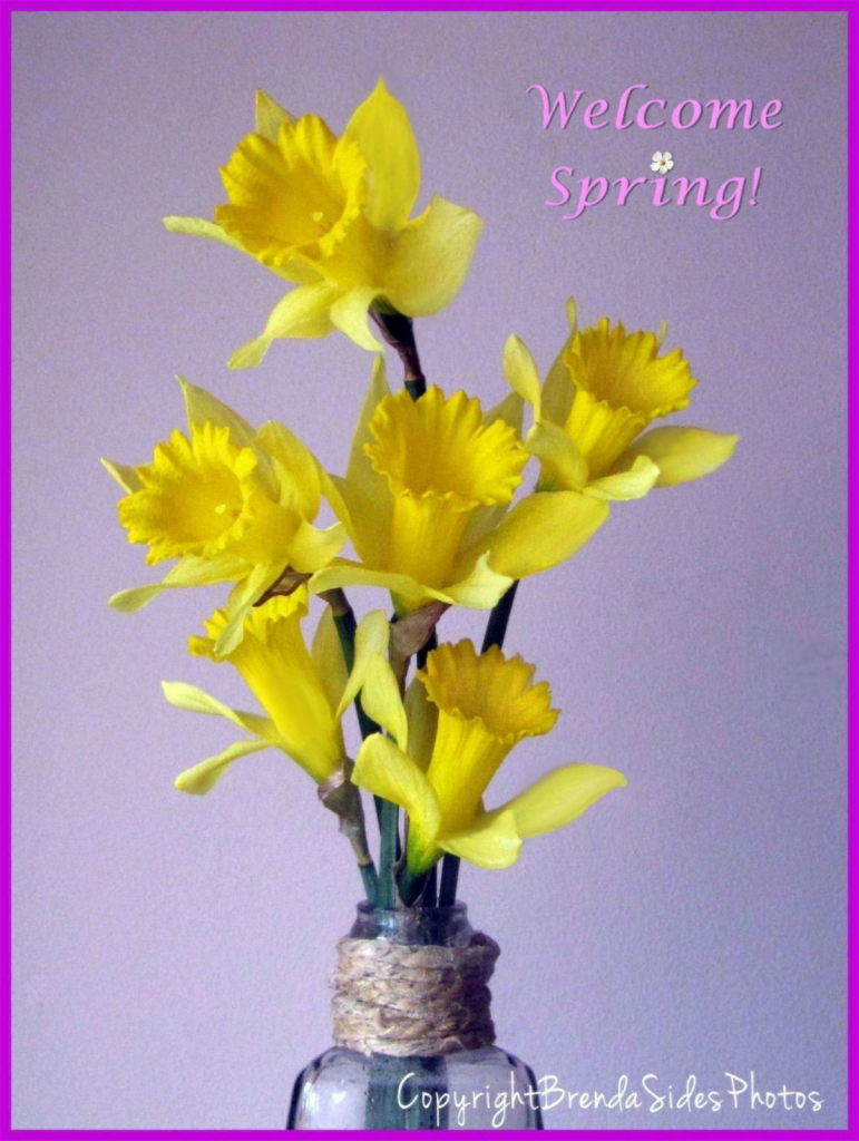 ~Welcome Spring!~