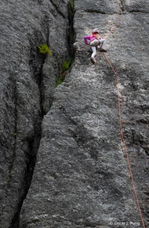 Fearless Little Climber