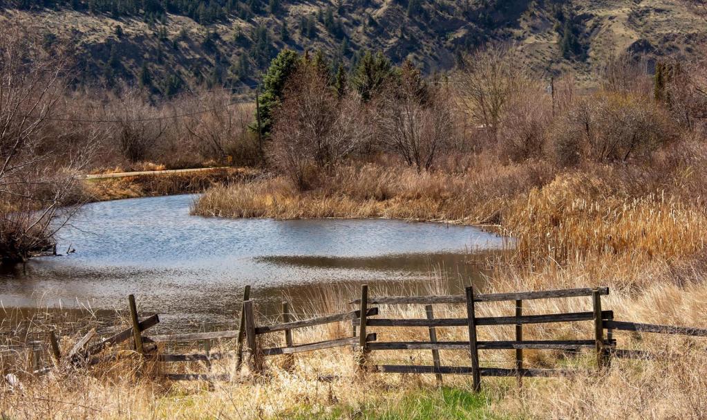 Pond - ID: 15915229 © Sheila Faryna