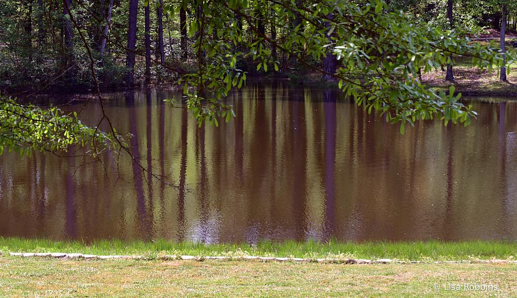 2021 Photo Challenge-Reflections on DP's Lake