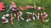 Tulip petals spel...