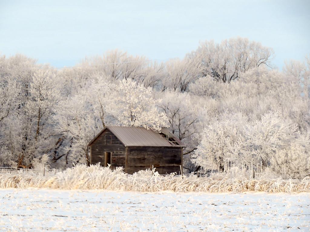 Snowy Day In Iowa - ID: 15918359 © Carolyn  M. Fletcher