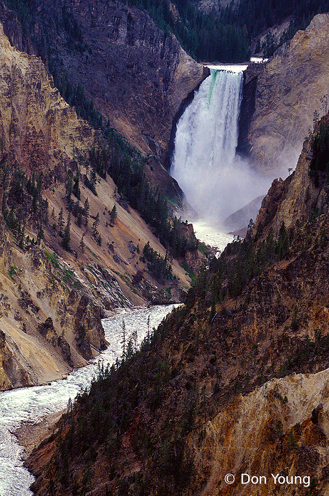 Yellowstone Lower Falls - ID: 15918415 © Don Young