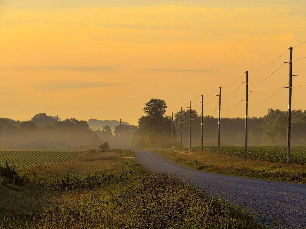 Country Morning - ID: 15920291 © Carolyn  M. Fletcher