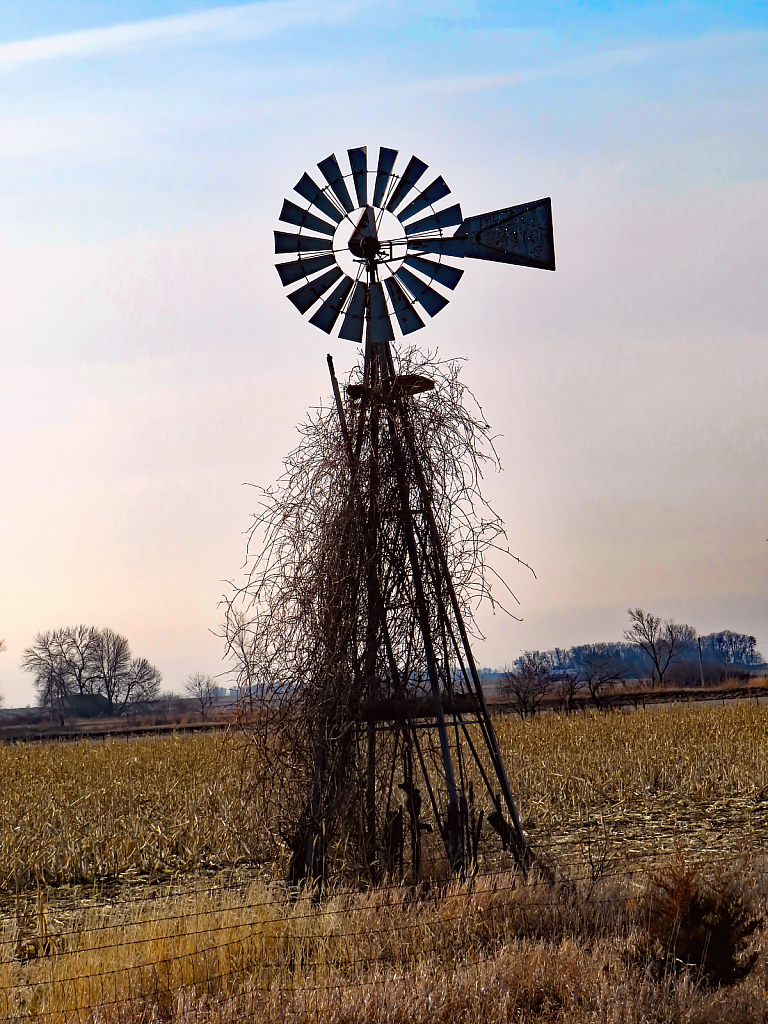 The Windmill Is Messy - ID: 15920544 © Carolyn  M. Fletcher