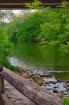 Conestoga River V...