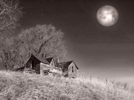 A Bad Moon Rising