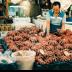 © John T. Sakai PhotoID# 15926476: Octopus for Early Morning Buyers