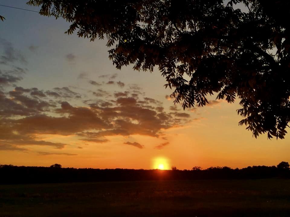 Good night sun - ID: 15926792 © Elizabeth A. Marker
