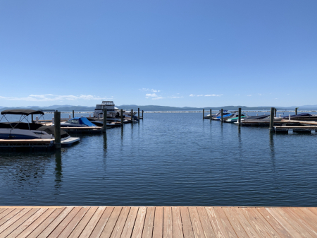 Spot On The Dock