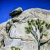 © John T. Sakai PhotoID# 15927707: Precarious Boulder