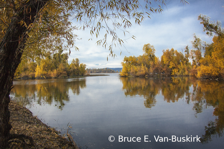 Fall at the county park - ID: 15927990 © Bruce E. Van-Buskirk