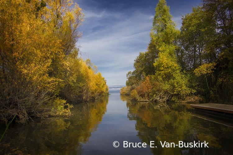County Park - ID: 15927994 © Bruce E. Van-Buskirk