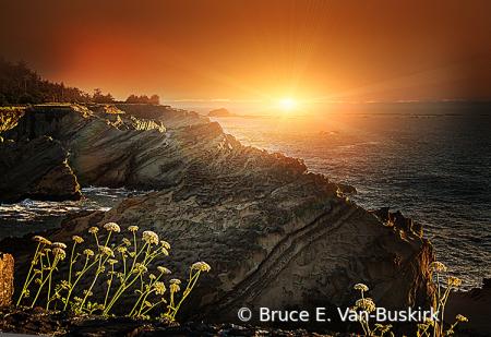 Golden hour in Oregon