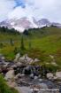 Mount Rainier Nat...