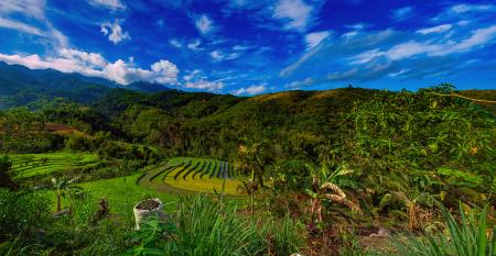 Philippine Highlands - Maao