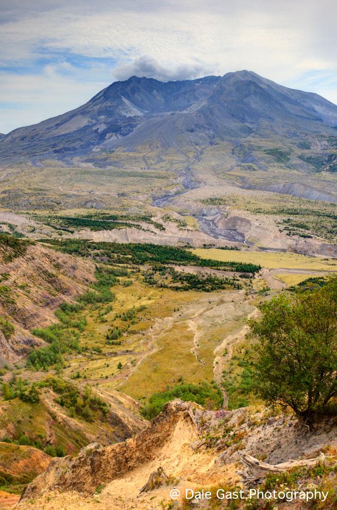Beauty from Destruction ~ Mount Saint Helens